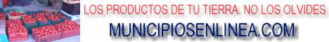 Municipios_en_Linea